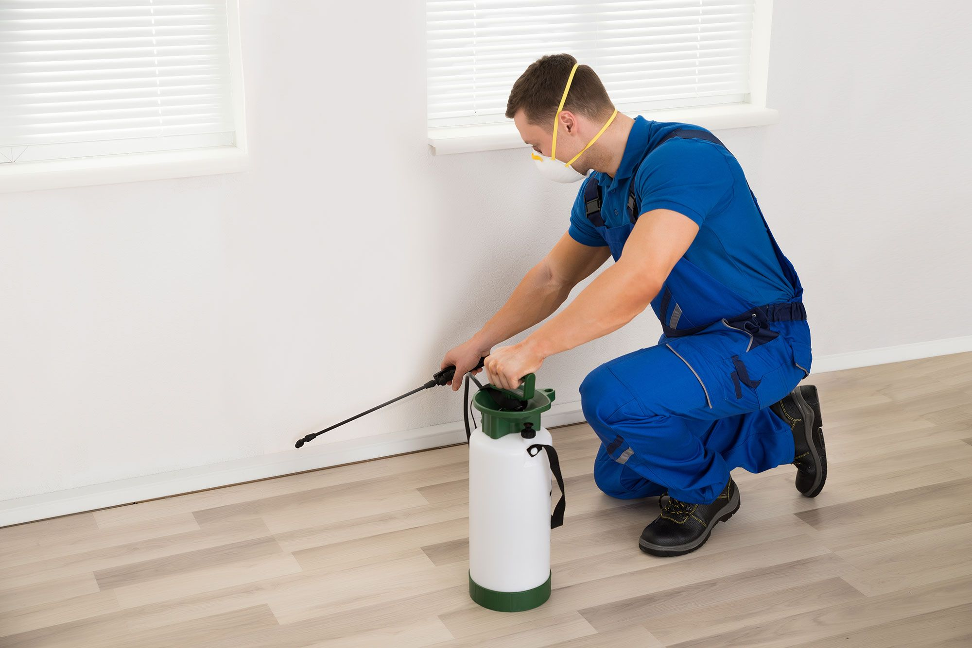 Exterminator Spraying Pesticide in House
